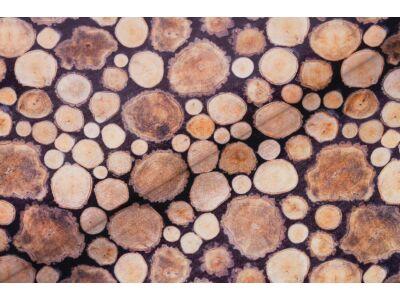 Fa mintás falvédő